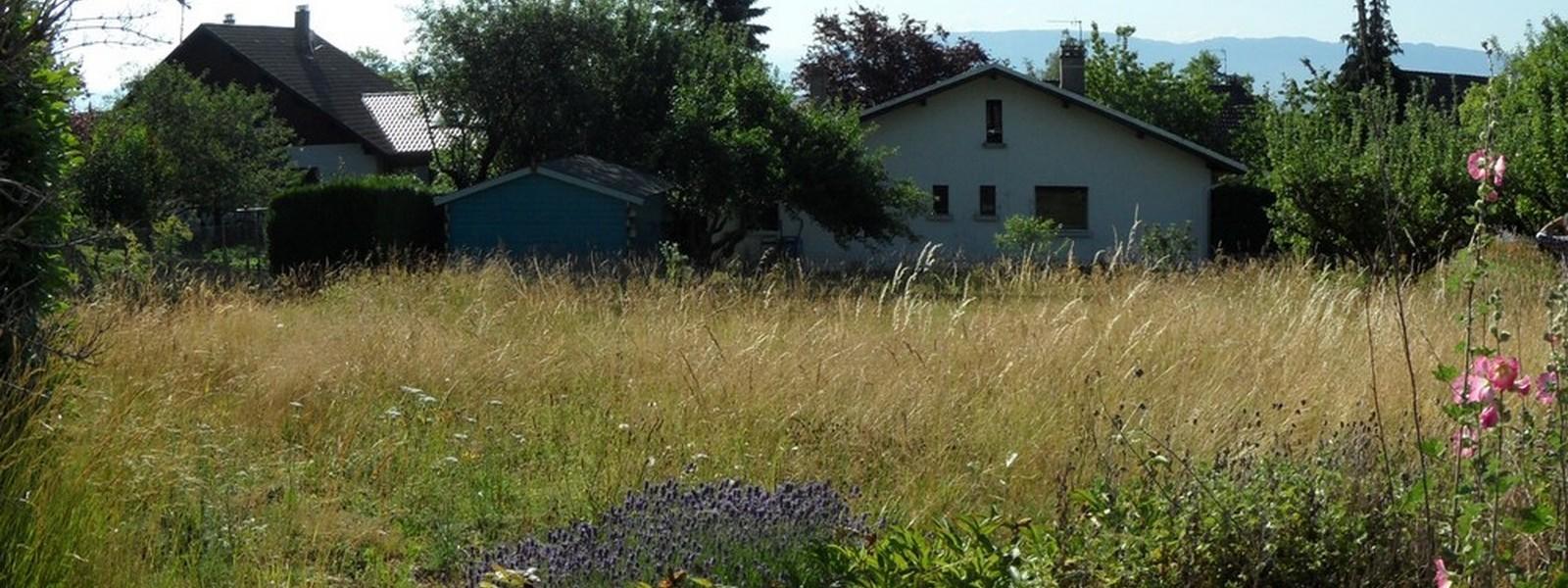 LES JARDINS D'EMERENTINE - Visuel 2 - Impact immobilier 01