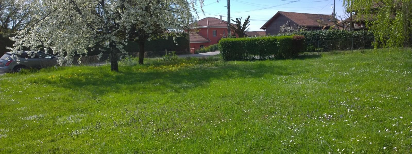 LES JARDINS D'ISABELLE - Visuel 1 - Impact immobilier 01